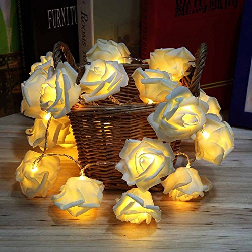 HOMREE String Lights , 20 LED/2M Battery Operated Rose Flower String Fairy Lights for Christmas , Valentine's, Wedding,Party,Indoor Decoration (Warm white)
