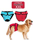 loveone Dog Diapers female(TM) with Velcro, Washable Reusable Wraps Nappies Convenient Pet Sanitary Panties for Medium/Large Dogs (XXL, Red+Blue)