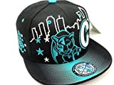 Carolina Skyline Cap in Panthers Colors Blue & Black