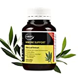 Comvita Olive Leaf Extract, Natural Cardiovascular Support, High Strength Capsules, Health Supplement