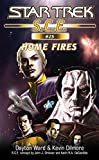 Star Trek: Home Fires (Star Trek: Starfleet Corps of Engineers Book 25)