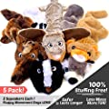 High Five Pets Dog Squeaky Toys - No Stuffing Dog Toys Set - No Dangerous Fluff to Chew or Swallow - 2 Squeakers - Big Plush Dog Toys for Small Dogs and Large Dogs Alike - Bulk Bundle - Pack of 5