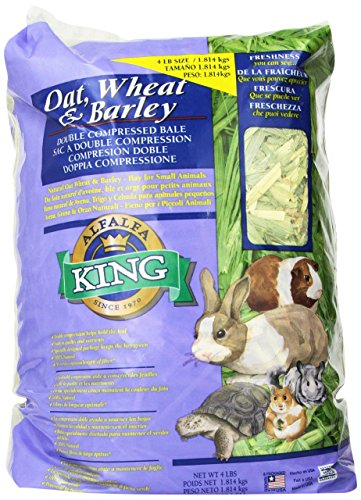 Alfalfa King Double Compressed Oat Wheat and Barley Hay Pet Food, 12 by 9 by 5-Inch by Alfalfa King
