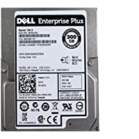 OEM Genuine Dell Seagate Savvio 300GB Inernal Hard Disk ST9300653SS 2.5 FJM3K