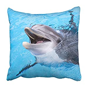 Emvency Square Throw Waist Pillow Case 16x16 Inches Decorative Cushion Pillowcases Dolphin Throw Pillow Cover With Hidden Zipper For Bedroom Decor Sofa Couch
