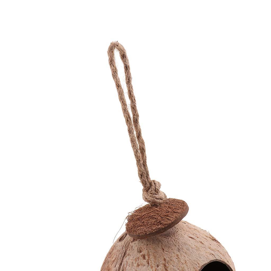 Échelle comme décrit D DOLITY Nid Perroquets Forme Coco Naturel Jouet Oiseau