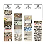 Pocket Cards by Tim Holtz Idea-ology, 100 Cards, Assorted Sizes, Multicolored, TH93208
