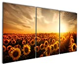 Gardenia Art - Flowers Sea of Sunflower Canvas Prints Modern Wall Art Abstract Paintings Charming Scenery Artwork for Home and Office Decorations,16X24 inch, Unframed