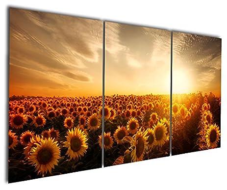 Amazon.com: Gardenia Art - Flowers Sea of Sunflower Canvas Prints ...