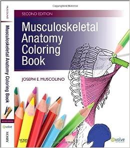 musculoskeletal anatomy coloring book 2e amazoncouk joseph e muscolino dc 8601400014356 books - Anatomy Coloring Books