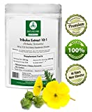 Naturevibe Botanicals Tribulus Terrestris Extract Powder 10:1 (100 Grams) – 10 x More Effective – Boosts Testosterone – Weight Loss – Libido Review