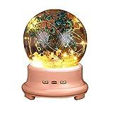 Longay Led Bottle Lamp Preserved Flower in Glass Dome, Night Light Bluetooth Speaker (Pink)