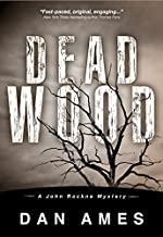 Dead Wood (A Private Investigator Murder Mystery Series) (John Rockne Mysteries Book 1)