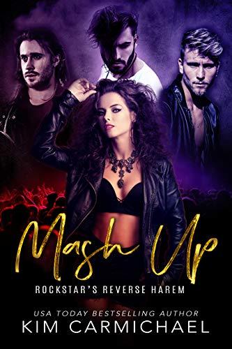 Mash Up Rockstars Reverse Harem ebook product image