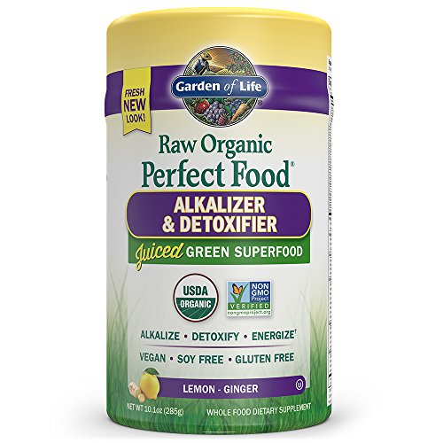 Garden of Life Vegan Green Superfood Powder - Raw Organic Perfect Whole Food Alkalizer & Detoxifier, 10.1oz (285g) Powder