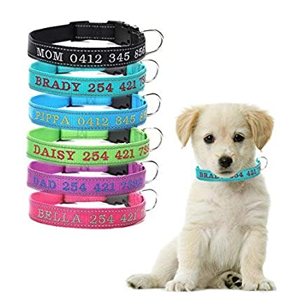Amazon com : Personalized Dog Collar, Custom Reflective