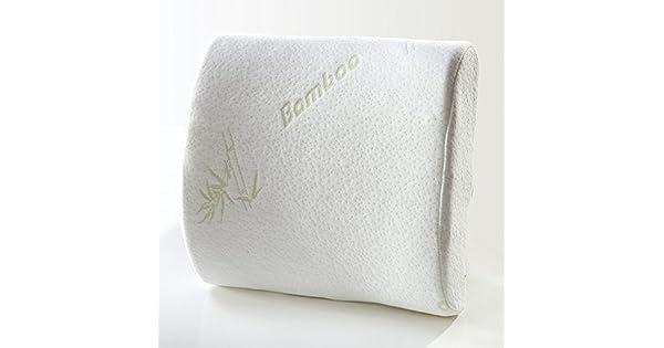 Amazon.com: Du & HL lumbar inferior dolor de espalda pillow ...