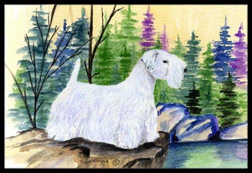 Multicolor 18H X 27W Carolines Treasures SS8104MAT Sealyham Terrier Indoor Outdoor Mat 18x27 Doormat
