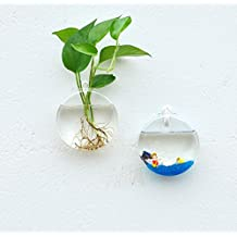 2 Pack Home Garden Wall Accessories Hanging Flower Pot Round Glass Hanging Planters indoor outdoor