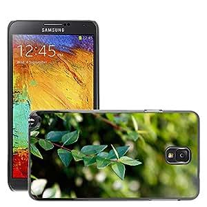Etui Housse Coque de Protection Cover Rigide pour // M00153387 Verde Hoja Verde fondo del escritorio // Samsung Galaxy Note 3 III N9000 N9002 N9005