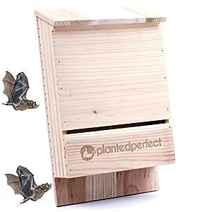 Dual Chamber Wooden Bat House