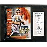 MLB San Francisco Giants Madison Bumgarner 2014 World Series MVP Player Plaque, 12 x 15-Inch