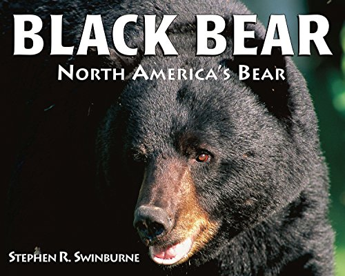 Black Bear: North America's Bear -