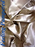 4 Pcs 100% Silk Charmeuse Sheet Set Queen Champagne Color Direct Import Half of Retail