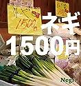Negi / ネギ1500円