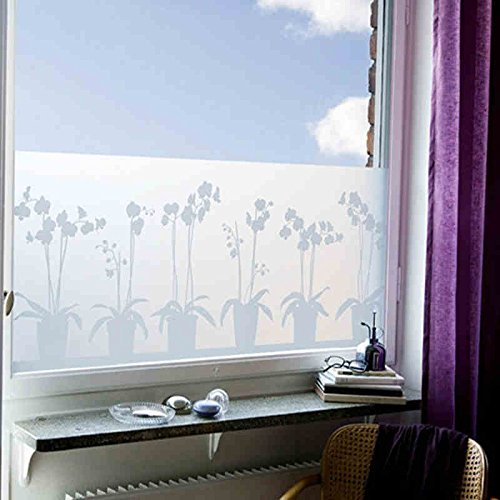 Top 10 Best Window Privacy Film for Conference Rooms and Glass Offices Reviews 2019-2020 cover image
