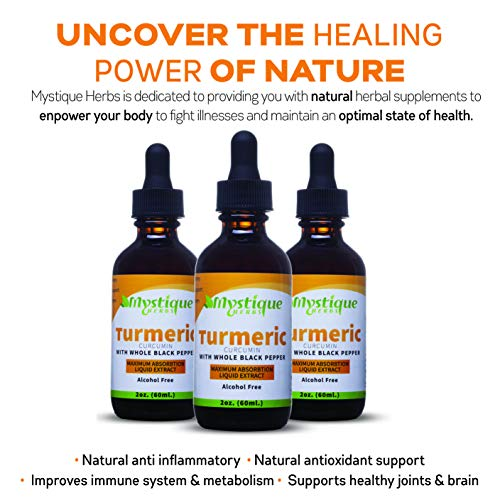 Turmeric Curcumin Liquid Extract Hip Joint Pain Relief. Super Antioxidant Supplement, Natural Anti-inflammatory for Chronic Pain Recovery. Organic Tumeric and Black Pepper for Maximum Absorption 3