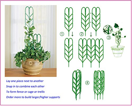 Review Potted Plant Growing Support