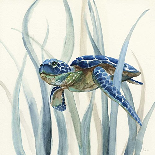 Seagrass Canvas Wall Decor - Turtle in Seagrass II by Nan 15