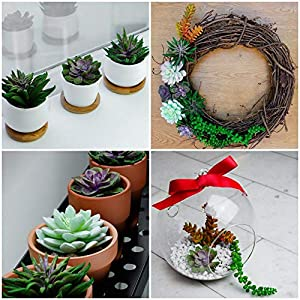 12 Fake Succulent Plants Realistic- Artificial Succulent Plants- Large Faux Succulents Unpotted- Hanging Floral Succulent Cuttings Arrangement- Outdoor And Indoor- Wall Decor -Easy DIY With Stems 7