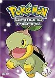 Pokemon: Diamond & Pearl, Vol 1