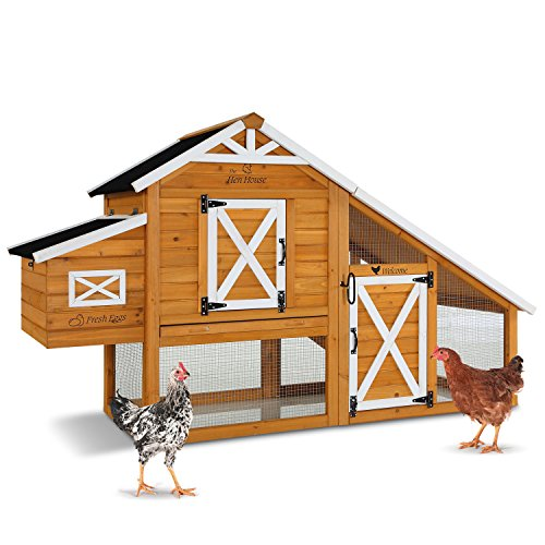 Pet Squeak Hen House Chicken Coop