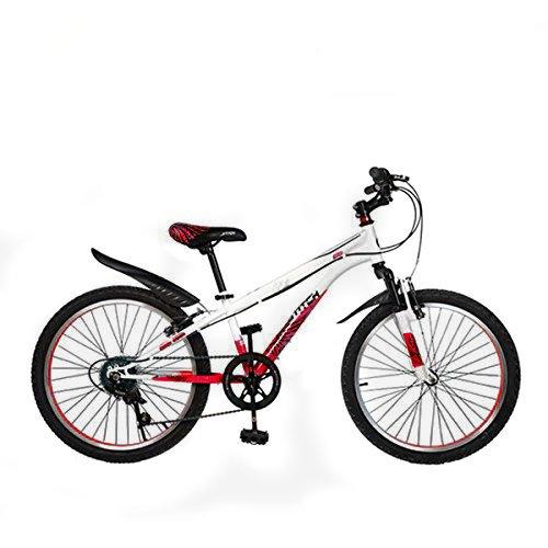 Cyfie ホーク 子供用自転車 22インチ 6段変速 スタンド型 泥よけ付 簡単に安装 男の子 女の子 小学生 ジュニアマウンテンバイク スポーティサドル B0774G5K5Lレッド