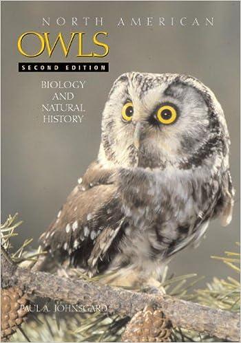 BIRDS OF PREY - BOOKS 51OnXfCfZ3L._SX348_BO1,204,203,200_