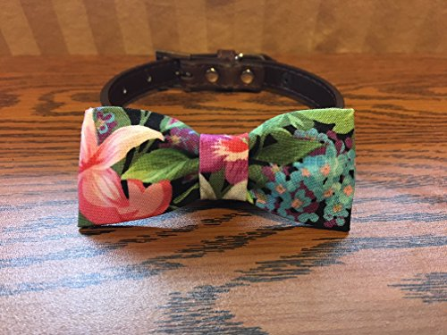 Flowers-Dog Bow Tie by Creations by Glo