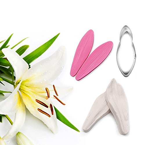 AK ART KITCHENWARE Lily Petal Decoration Tool Leaf and Flower Tool Kit Stainless Steel Cookie Cutter Set Silicone Veining Mold Petal Sugar Flower Making Tool (Veining Cutter)