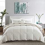 APSMILE Premium Heavyweight Goose Down Duvet Insert Queen - 100% Original Cotton Cover, 55 Oz Hypoallergenic Optimum Warmth Comforter (90x90 - White)