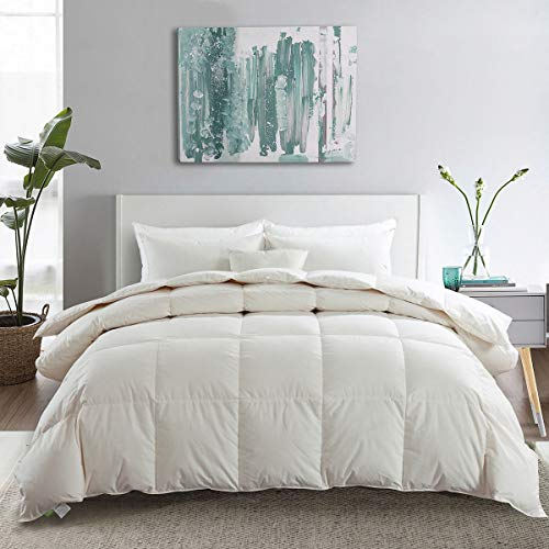 APSMILE Premium Lightweight Siberian Goose Down Comforter Queen Size -100% Cotton with Corner Tabs, 650FP 25 Oz Light Warmth Thin Duvet Inserts for Summer Hot Climate/Bed Sleeper (Full/Queen, White) (Queen Cotton Comforters)