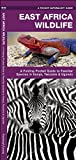 East Africa Wildlife: A Folding Pocket Guide to Familiar Species in Kenya, Tanzania & Uganda (Pocket Naturalist Guide Series)