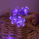 Battery Operated String Lights LED Sakura Fairy Light Flower for Bedroom and Indoor/Outdoor Christmas Tree Warm Light 40 LED