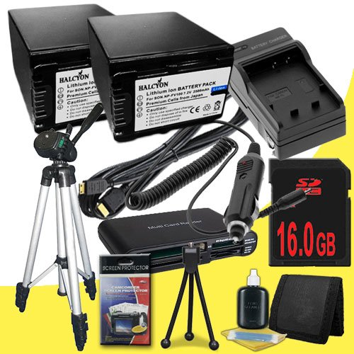 TWO NP-FV100 Lithium Ion Replacement Batteries w/Charger + 16GB SDHC Memory Card + Mini HDMI + Tripod + Memory Card Reader/Wallet + Deluxe Starter Kit for Sony NEXVG10, NEXVG20 Interchangeable Lens HD Handycam Camcorder DavisMAX Accessory Bundle