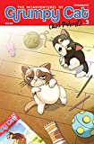 The Misadventures Of Grumpy Cat And Pokey #3