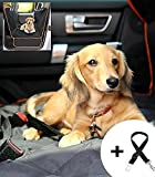 Bombshell Pets Luxury Dog and Child Car Seat Cover / Protector with FREE Dog safety belt and drawstring case - Hammock and Regular Style, Machine Washable, Non Slip and Waterproof with CORAL trim