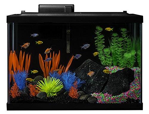 Glofish Tank GloFish 20 Gall...