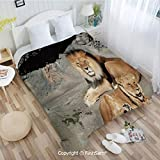 PUTIEN Flannel Fleece Blanket with 3D Male and Female Lions Basking in The Sun Wild Cats Habitat King of Jungle Lightweight for Adults(39Wx49L)