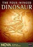 NOVA: The Four-Winged Dinosaur